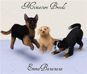 Собаки - Страница 2 5b571f63b808