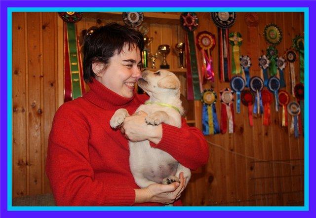 """Питомник """"Прима Персона"""". Мои собаки-моя жизнь! D56ad7d25827"""