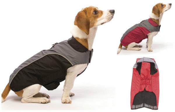 Интернет-зоомагазин Red Dog: только качественные товары для  - Страница 11 587e110d00a3