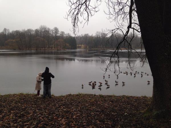 """"""" Есть городок в одном прекрасном парке...""""  ( Пушкин и Екатерининский парк ) - Страница 3 3e69ca7dcb3e"""