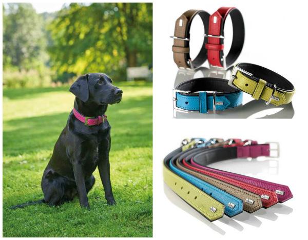 Интернет-магазин Red Dog- только качественные товары для собак! - Страница 7 B6873298936e