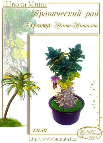 Выпуск работ Школы мини - Тропический рай 5f9b51520987t