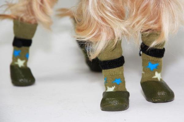 Интернет-магазин Red Dog- только качественные товары для собак! - Страница 4 486d575f82c4