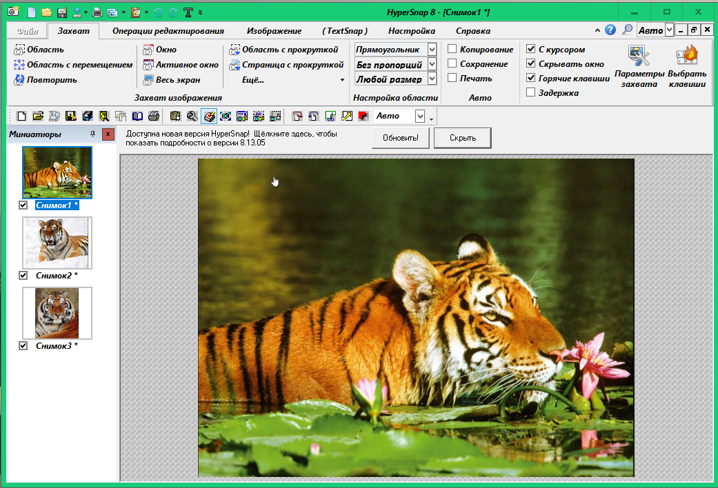 HyperSnap - инструмент для захвата изображения F4d82618a717