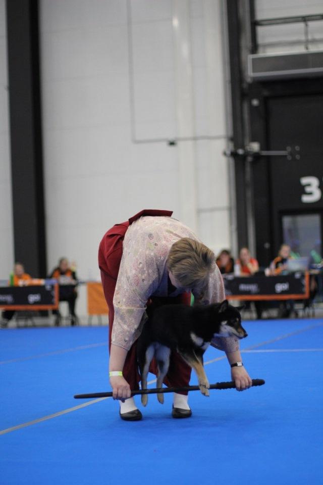 Танцы с собаками - Страница 4 Cd6e7b8bc903
