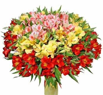 Поздравляем с Днем Рождения Ирину (ir-timak) 59654488532ft