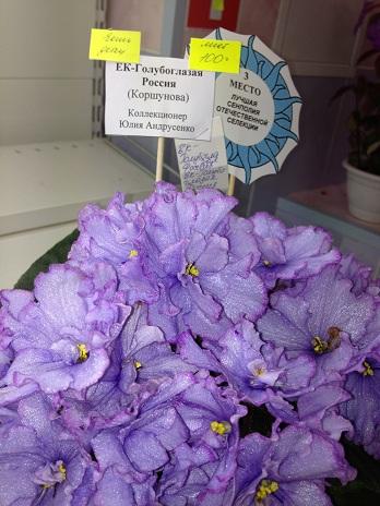 Выставка цветов - Страница 3 D6863dafee14