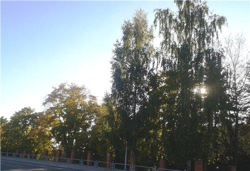 Осень, осень ... как ты хороша...( наше фотонастроение) - Страница 7 A9c53fa37cd9