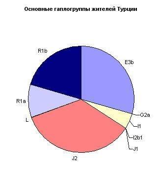 ДНК данные турков. 289f9009c494