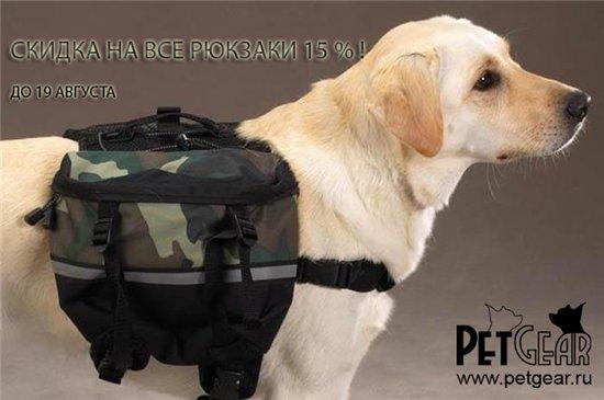Интернет-зоомагазин Pet Gear - Страница 9 13080d615b6b