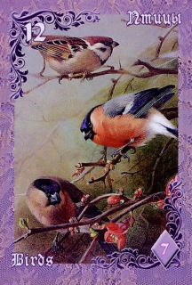 Лиловые и вишневые сумерки 3036518a5b94