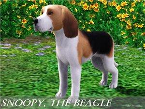 Собаки - Страница 6 6bd06c818f40