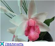 Цветы ручной работы из полимерной глины - Страница 4 Ff9fba545543t
