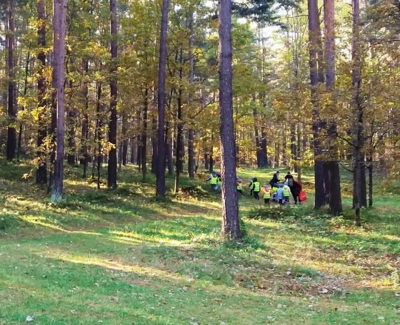Осень, осень ... как ты хороша...( наше фотонастроение) - Страница 8 Fb73c370b23b
