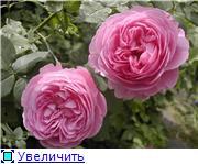 Specially for Karkela )))    Тестирование сербок и проч. - Страница 4 8a7fc8adcee4t