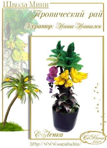 Выпуск работ Школы мини - Тропический рай 729d7465cfdct
