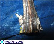 Виноград- секреты выращивания - Страница 2 Fb97d944f940t