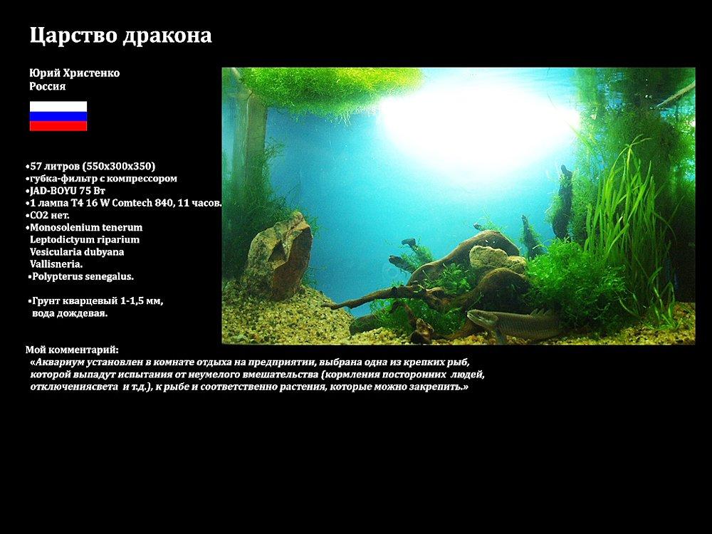 Конкурс аквариумного дизайна Юга России 2013 20bb63ba165e