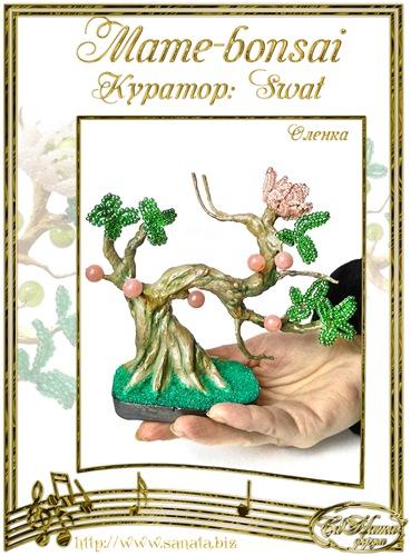 "Галерея ""Mame-bonsai"" 689083f4a3f5t"
