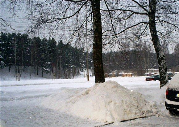 Зимняя сказка на наших фотографиях - Страница 2 5d65a637a7a3