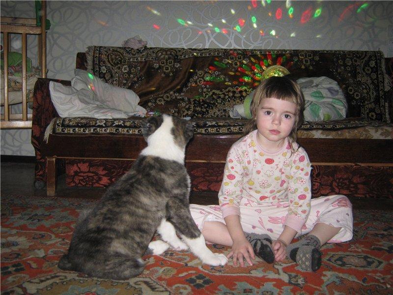 Наша Тара - дочка Доры и Башика - Страница 4 209b3144107b