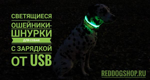 Интернет-магазин Red Dog- только качественные товары для собак! - Страница 6 162f604faf94