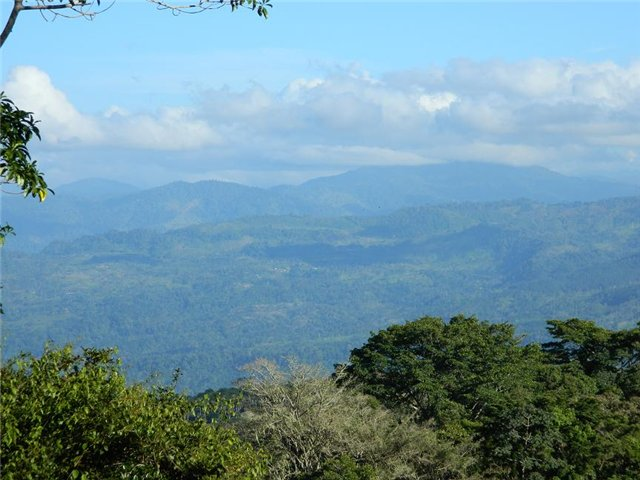 Costa Rica. Центральная Америка. - Страница 17 1abe633d8346