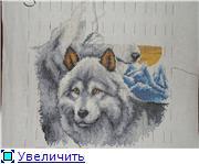 Совместные танцы с волками от Vervaco - Страница 9 6e3d74064c84t