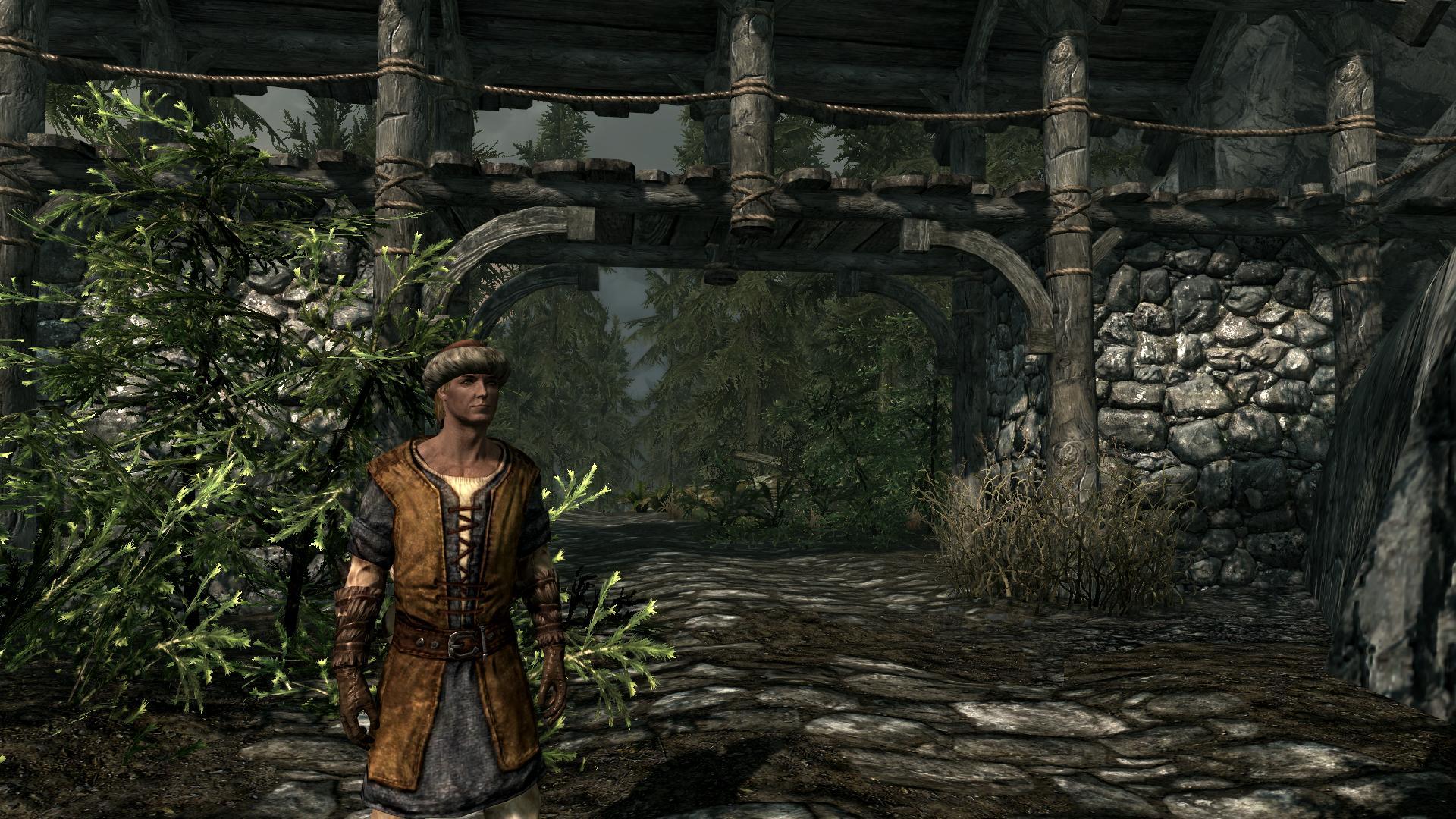 The Elder Scrolls V: Skyrim Db09be940f6f