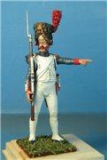 VID soldiers - Napoleonic french army sets 0638afab2fc4t