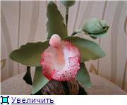 Цветы ручной работы из полимерной глины 0ee2236ca778t