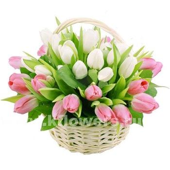 Поздравляем с Днем Рождения Светлану (swetvokne) Ac3bb3522783t