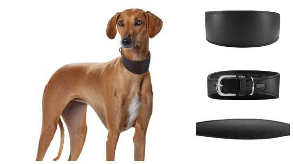 Интернет-зоомагазин Red Dog: только качественные товары для  - Страница 11 Fffc3974a6c2