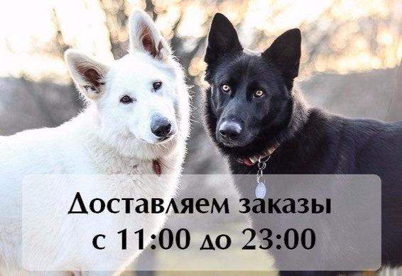 Интернет-магазин зоотоваров Счастливый Питомец A3b1d663383e