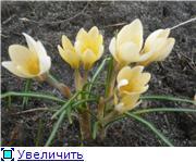 "Фотоконкурс ""Весна идет!"" 7824d58049e5t"