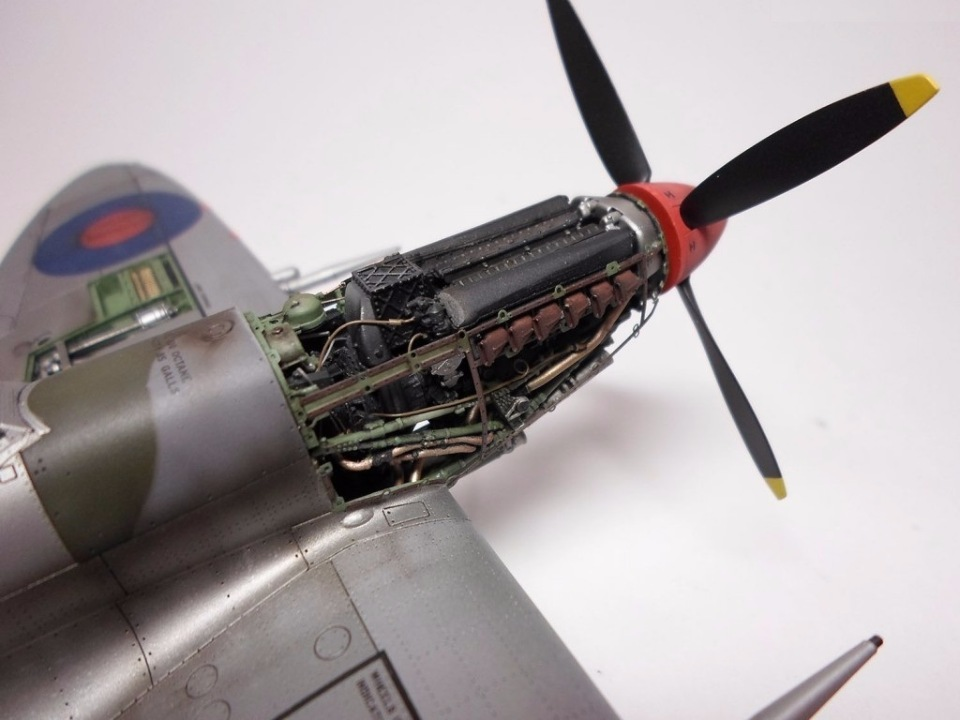 Supermarine Spitfire Eduard 1/48 9084443aa2be