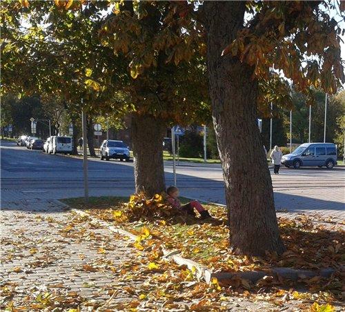 Осень, осень ... как ты хороша...( наше фотонастроение) - Страница 7 9d3febe11e7a