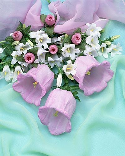 nadejdу поздравляем 11 марта с Днем рождения! Bf3a2d087038