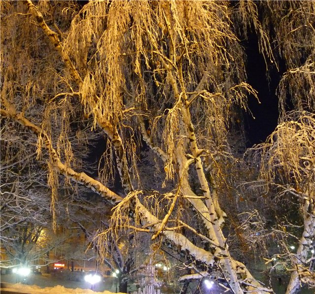 Зимняя сказка на наших фотографиях - Страница 3 590c0e040bc4