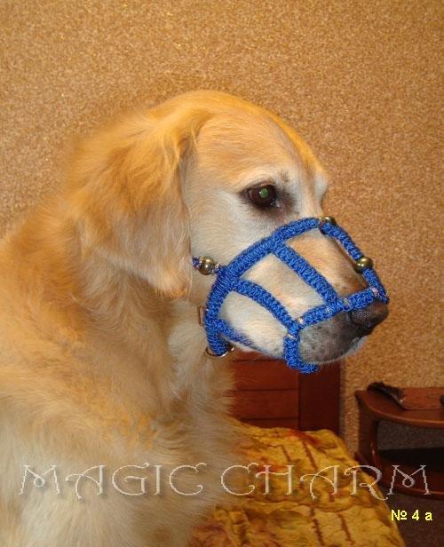 Magic Charm - ошейники, обереги, украшения и аксессуары для собак 612f7d8c4c25