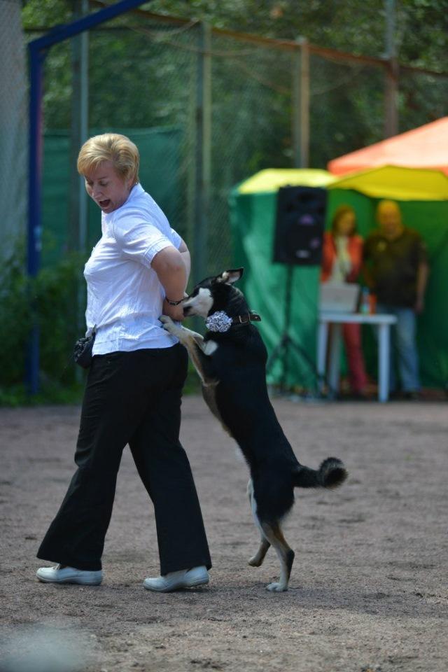 Танцы с собаками - Страница 3 755c77c48c39