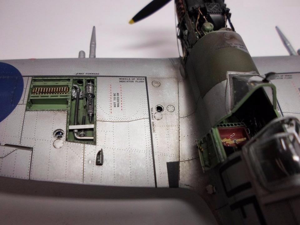 Supermarine Spitfire Eduard 1/48 5ed43a1ec852