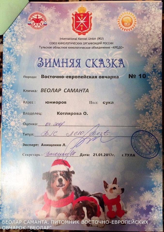 ВОСТОЧНО-ЕВРОПЕЙСКАЯ ОВЧАРКА ВЕОЛАР САМАНТА - Страница 4 Be1bfc953c0d