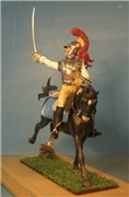 VID soldiers - Napoleonic french army sets 6fd569b1244bt