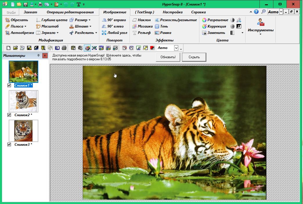HyperSnap - инструмент для захвата изображения Ba60f2e9cfc7