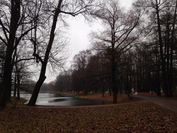""""""" Есть городок в одном прекрасном парке...""""  ( Пушкин и Екатерининский парк ) - Страница 3 1aeebc20e70c"""