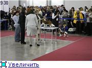 ЕВРАЗИЯ - 2012 7e0347e24ae6t