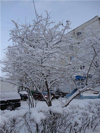 Северная (Скандинавская) ходьба 97a5fc12d7bf