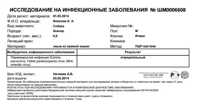 Москва, Итман, кобель 6 лет - Страница 2 Cc5083ab8dee