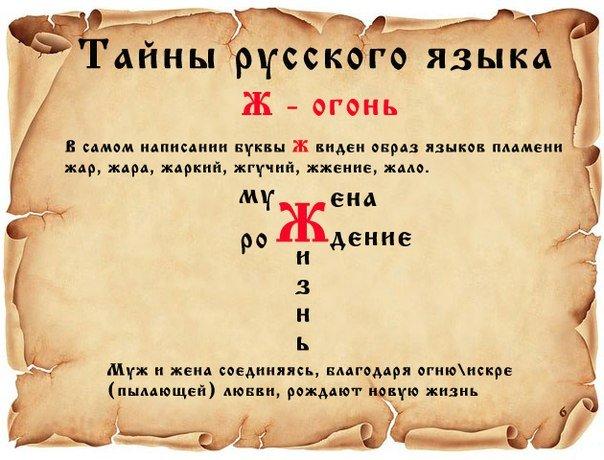 ТАЙНЫ РУССКОГО ЯЗЫКА. 1fb442631a66
